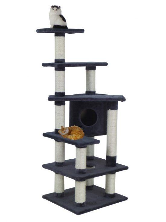 40290-grey-cat (Medium)